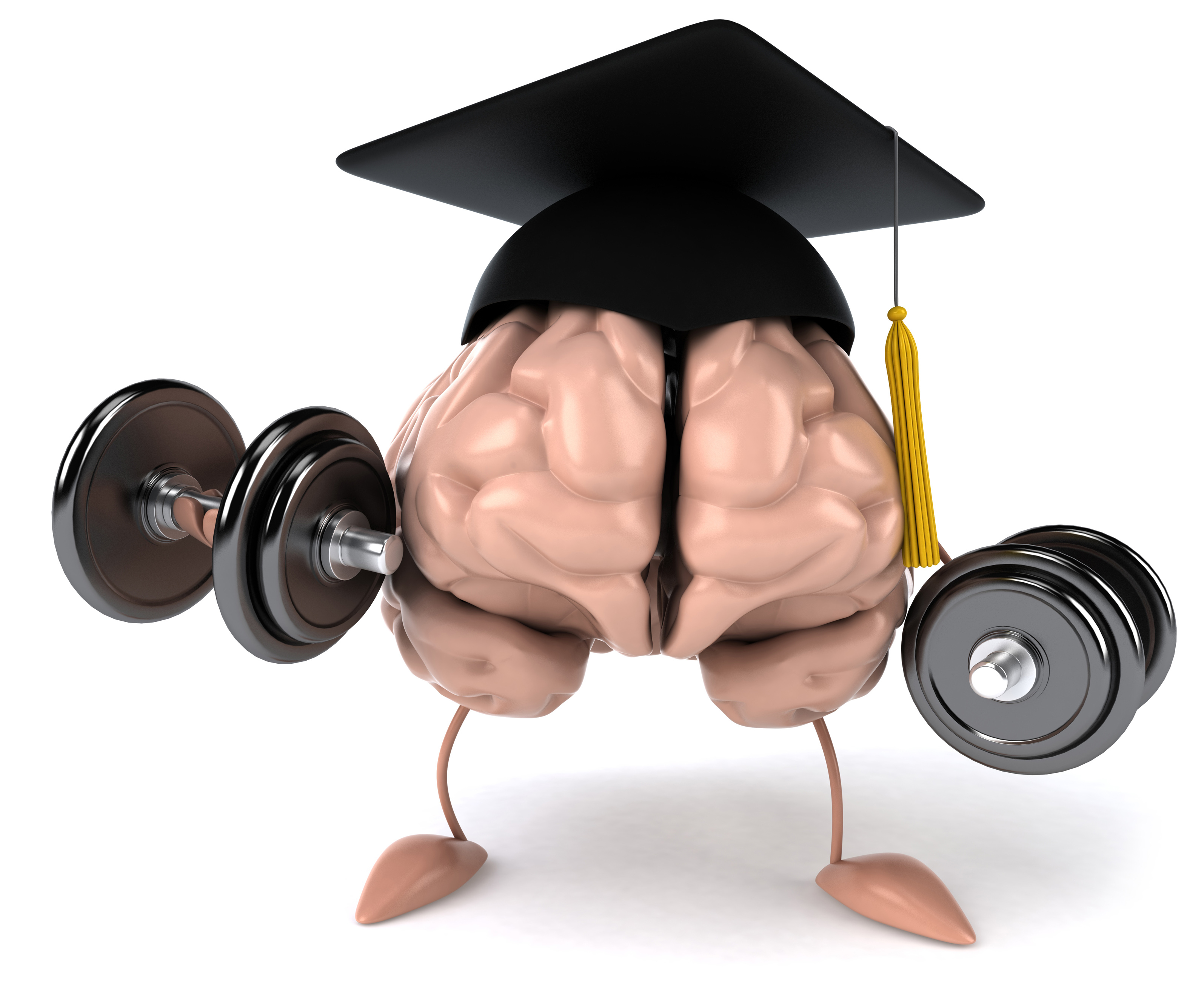 New Study Shows Quot Brain Boot Camp Quot Can Help You Grow Bigger